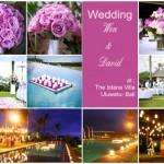 wedding Wen & David